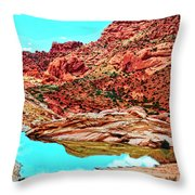 Coyote Butte Throw Pillow