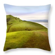 Coyote Hills Throw Pillow