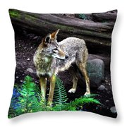 Coyote In Mid Stream Throw Pillow
