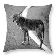 Coyote On The Road Throw Pillow