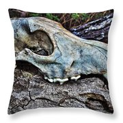 Coyote Skull Throw Pillow