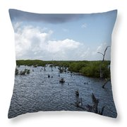 Ominous Clouds Over A Cozumel Mexico Swamp  Throw Pillow