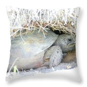 Cozy Burrow Throw Pillow