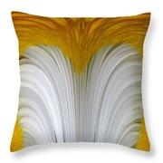 Cozy Shawl Daisy Throw Pillow