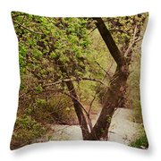 Cozy Stream In American Fork Canyon Utah Throw Pillow