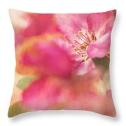 Crab Apple Blossoms II Throw Pillow