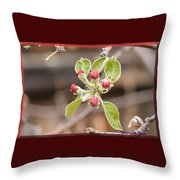 Crab Apple Buds Throw Pillow