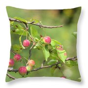 Crab Apple Fruit Throw Pillow