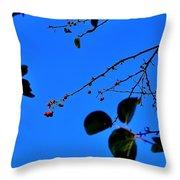 Crab Apples Blue Sky 6510 Throw Pillow