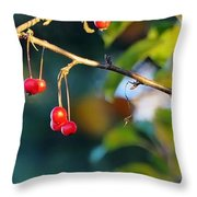 Crab Apples Branches P 6543 Throw Pillow