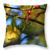 Crab Apples Leaves 6498 Throw Pillow