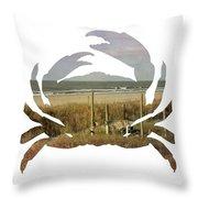 Crab Beach Throw Pillow by Michael Colgate