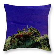 Crab Cakez 5 Throw Pillow