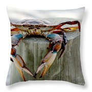 Crab Hanging Out Throw Pillow