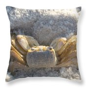 Crab On The Beach Throw Pillow