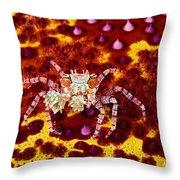 Crab Underwater Throw Pillow