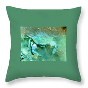Crab With The Blues Throw Pillow