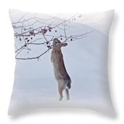 Crabapple Bunny Throw Pillow