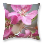 Crabapple Tree  Pink Flowers Throw Pillow