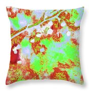 Crabapples Series #4 23 Throw Pillow