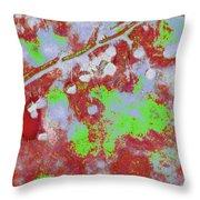 Crabapples Series #4 25 Throw Pillow