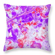 Crabapples Series #4 33 Throw Pillow