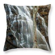 Crabtree-1 Throw Pillow