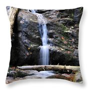 Crabtree Falls In Fall Throw Pillow