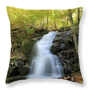 Crabtree Falls In The Fall Throw Pillow