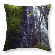 Crabtree Falls Throw Pillow