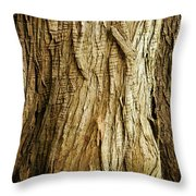 Cracked And Stretched Throw Pillow
