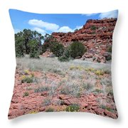 Cracked Earth And Yellow Flowers Throw Pillow