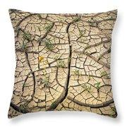 317805-cracked Mud Patterns  Throw Pillow