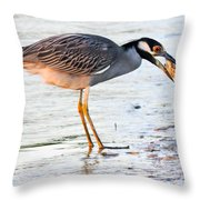Cracking The Shell Throw Pillow