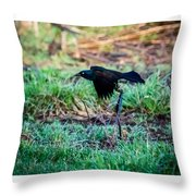 Grackle In The Morning  Throw Pillow