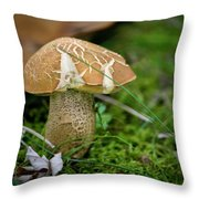 Crackles Squared Throw Pillow