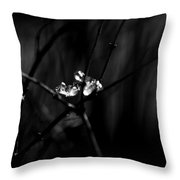 Cradle Of Ice Throw Pillow