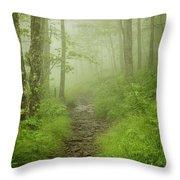 Craggy Gardens Trail Throw Pillow