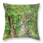 Craggy Tree For Will Throw Pillow