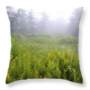 Cranberry Glades Early Morning Throw Pillow