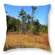 Cranberry Glades Throw Pillow