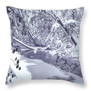 Cranberry River Winter Heavy Snow Throw Pillow