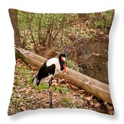 Crane And Canoe Throw Pillow