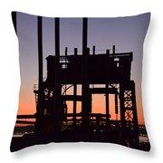 Crane At Sunset Throw Pillow