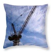 Crane Bk Throw Pillow