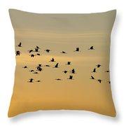 Crane Flight Throw Pillow