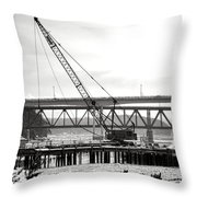 Crane In Winter Throw Pillow