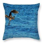 Crane Lift Off Throw Pillow