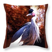 Crane Stare Down Throw Pillow