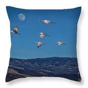 Cranes Across Colorado Blue Throw Pillow